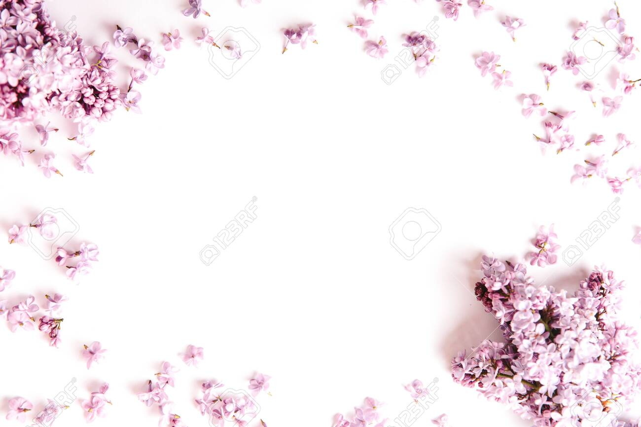 Banner of Frame of lilac flowers with space for text on white background. Flat lay, top view, spring concept, mother's day, - 145954512