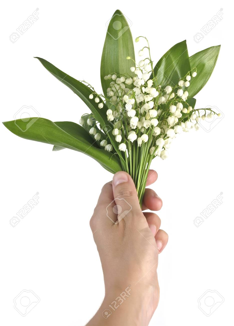 hand with lily of the valley Stock Photo - 17659474