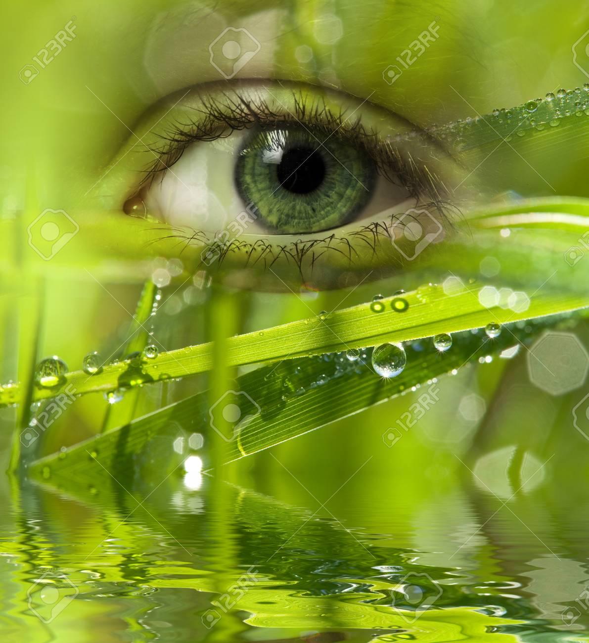 green energy - 30439495