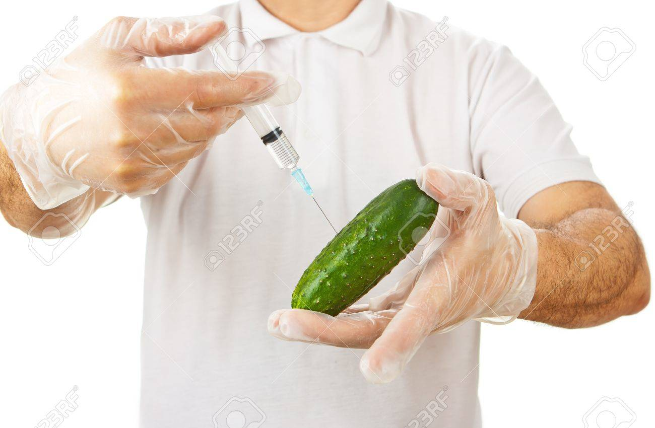 Hands in disposable gloves injecting cucumber with syringe over white background Stock Photo - 13970859