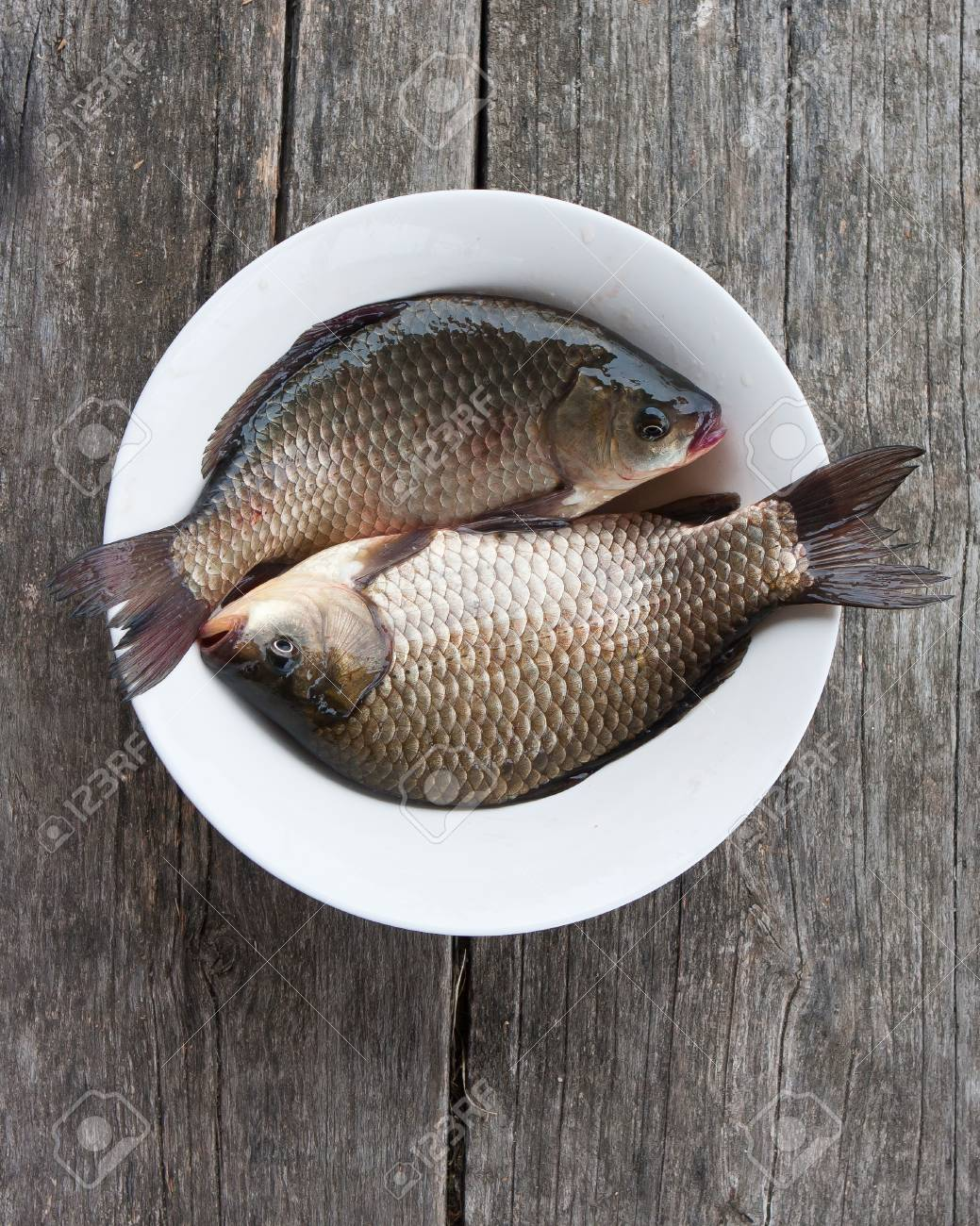 Two fresh carps in a plate on a wooden background Stock Photo - 15168530