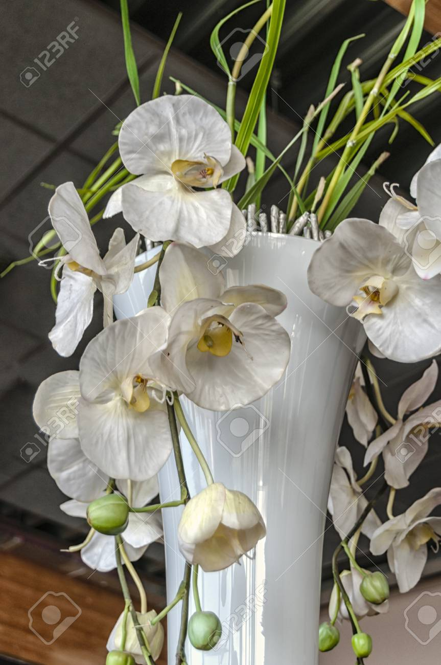 White Flowers In A Vase Indoor Stock Photo Picture And Royalty Free