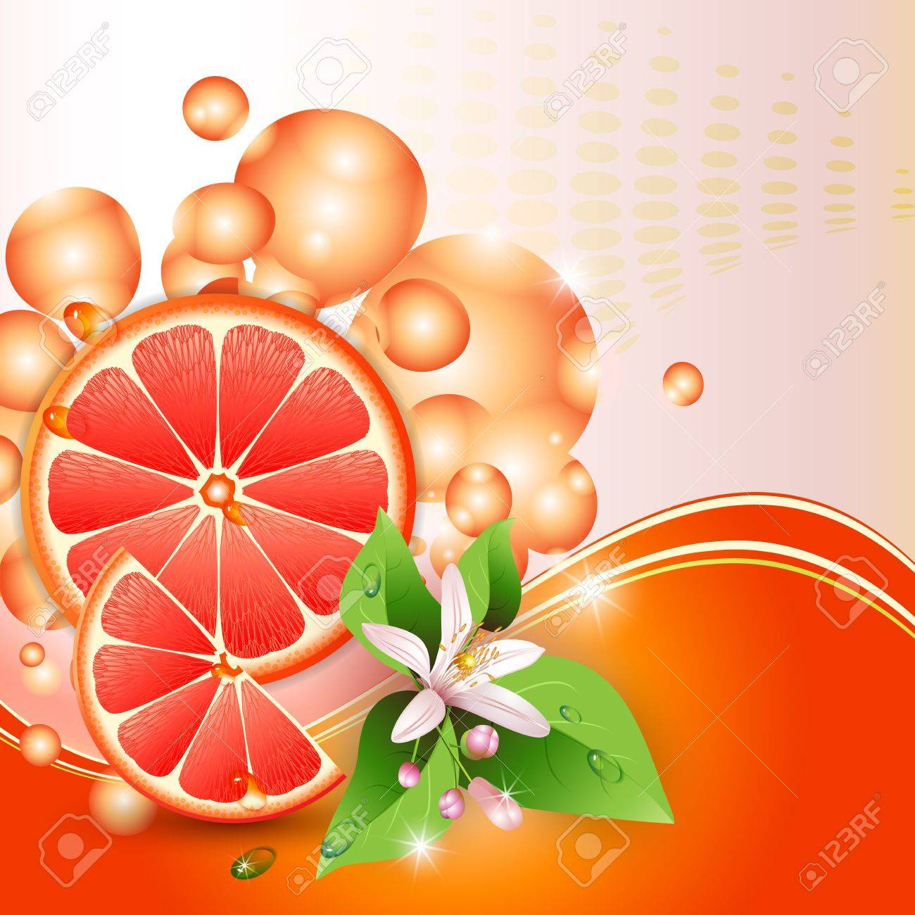 Abstract background with juicy slices of grapefruit and flowers Stock Vector - 13618351
