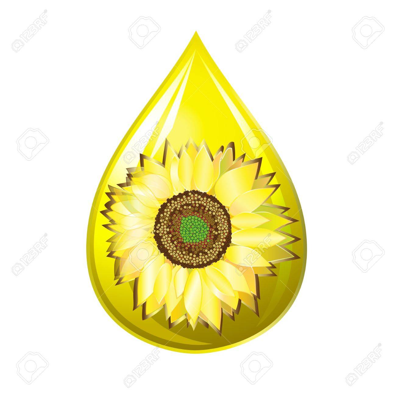 Sunflower seed oil drop isolated on a white Stock Vector - 14923619
