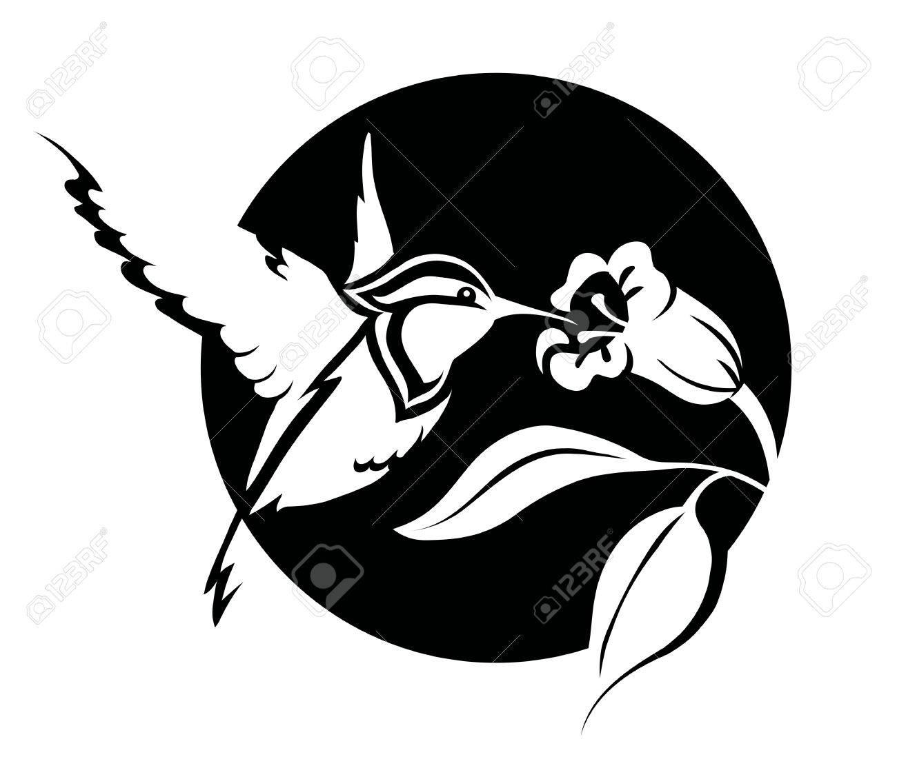 Ilustración En Blanco Y Negro De Un Colibrí Con Una Flor