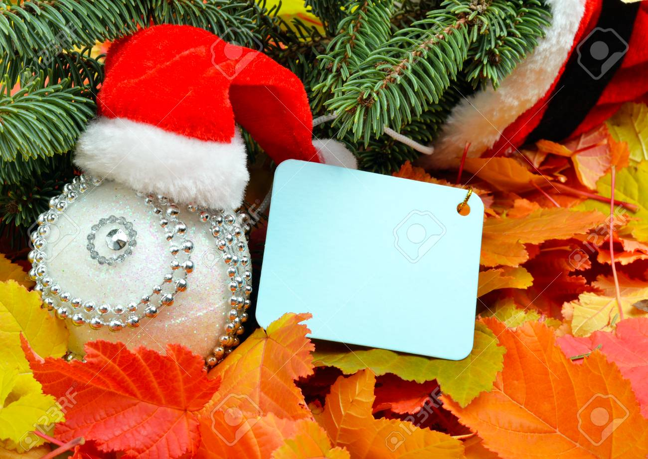 Christmas decoration, Santa Claus hat and pinetree on the background of autumn leaves. - 60807709