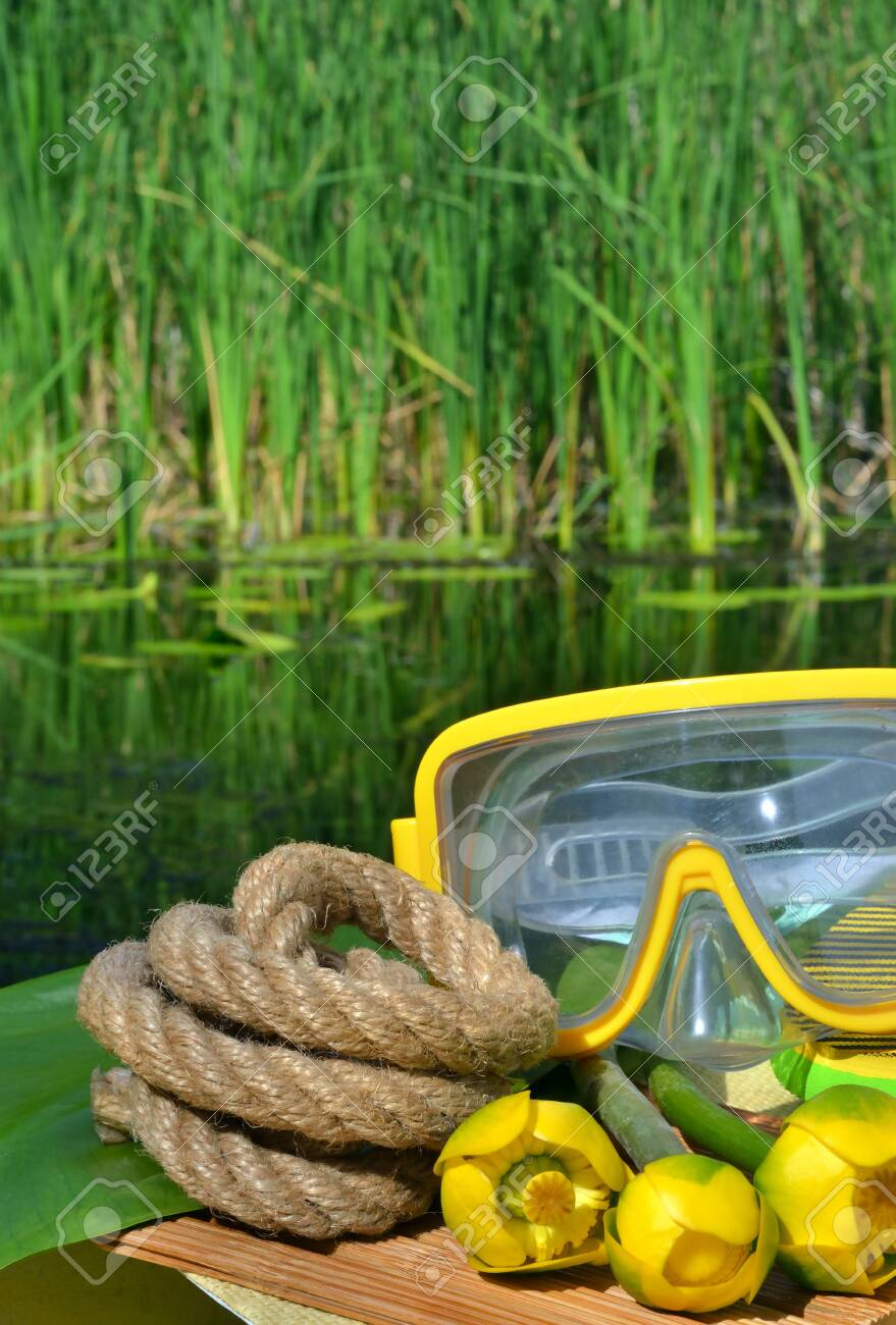 Water lily, diving mask and rope on the background of green reeds and river. - 121736001