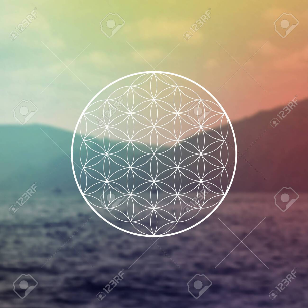 Flower of life sacred geometry illustration with intelocking circles and light dots in front of photographic background. Hipster tree of life sci fi art - 153198306