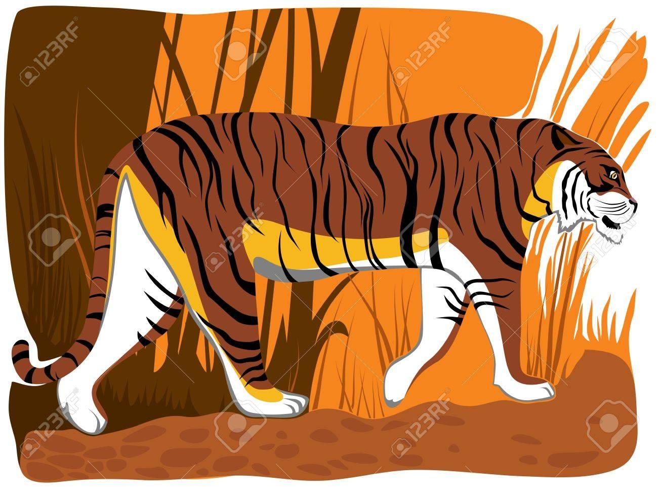 illustration of cartoon tiger in orange brown tone in jungle. Stock Vector - 16006818