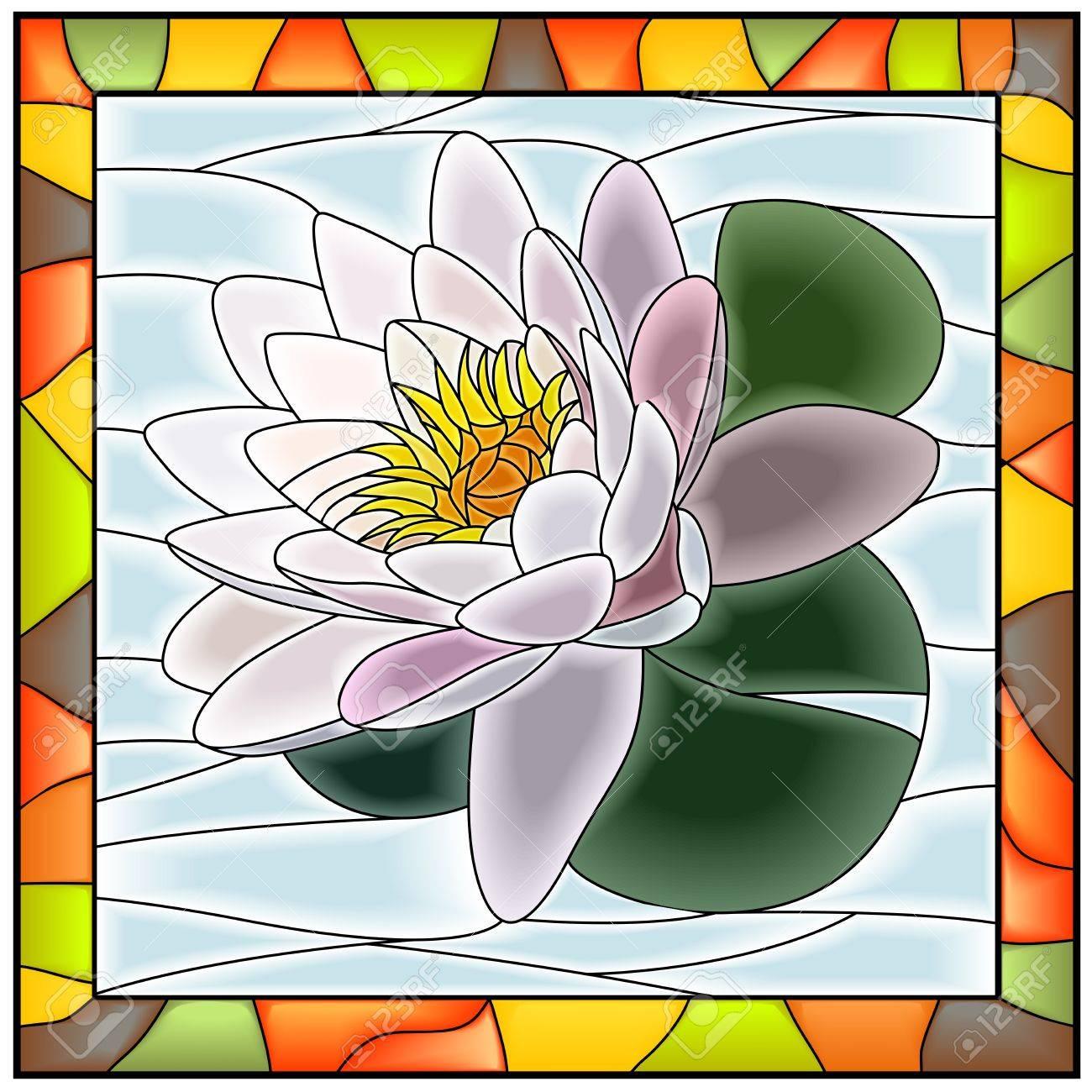 Ilustración Vectorial De La Flor Del Lirio Blanco De Agua Ventana ...