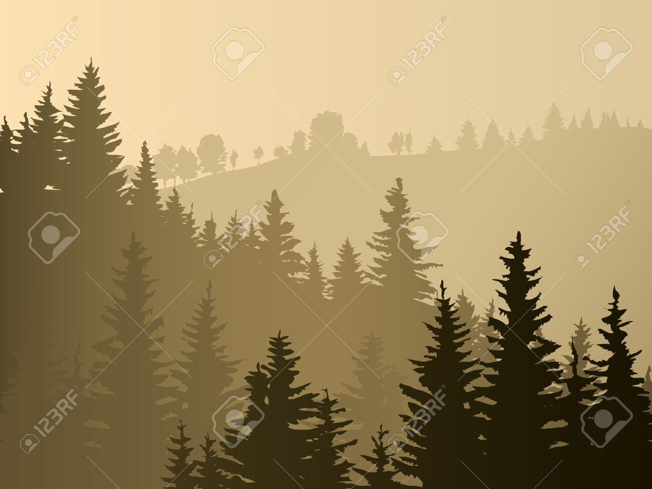 Wild coniferous wood in a morning fog Stock Vector - 16271302