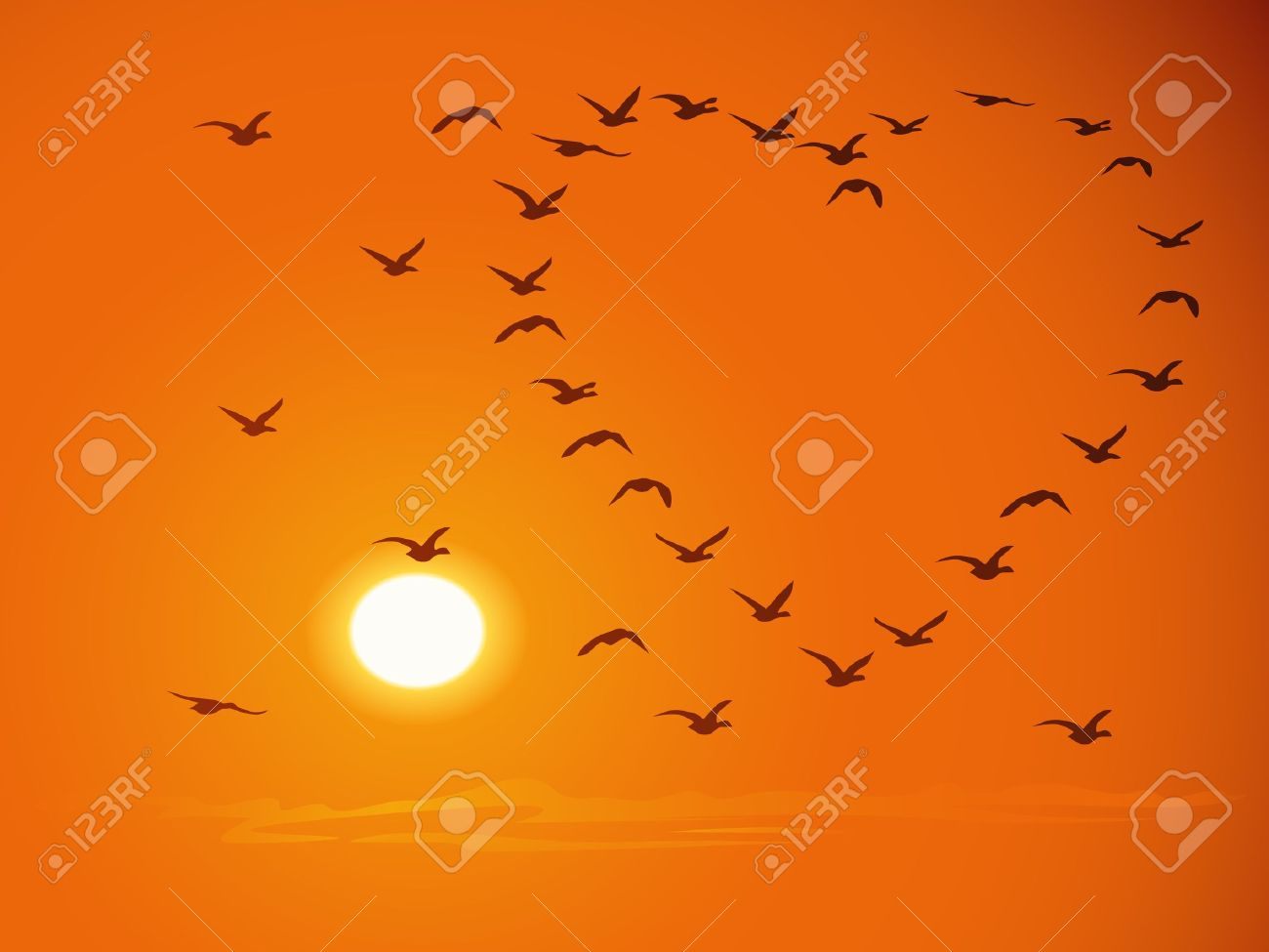 Silhouettes of flying flock birds (in shape of heart) against a sunset and the orange sky. - 16449898