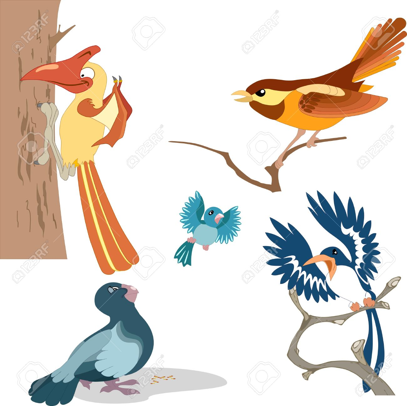 The illustration shows a variety of beautiful cartoon birds.Performed on separate layers. Stock Vector - 10560727