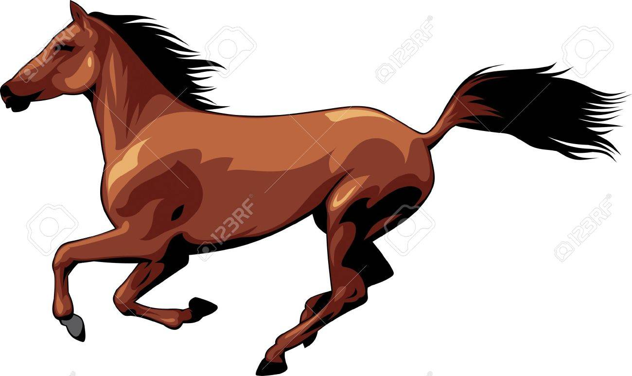 The illustration shows a beautiful horse .She runs, she flies mane and tail. Illustration isolated on white background. Stock Vector - 17777112