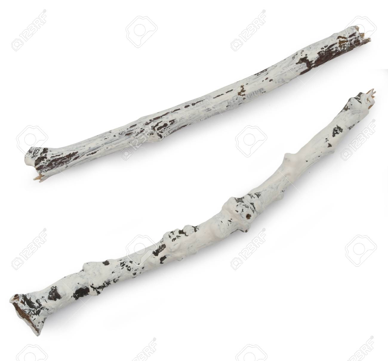 White Painted Branches Isolated On The White Background Stock Photo Picture And Royalty Free Image Image 46123080