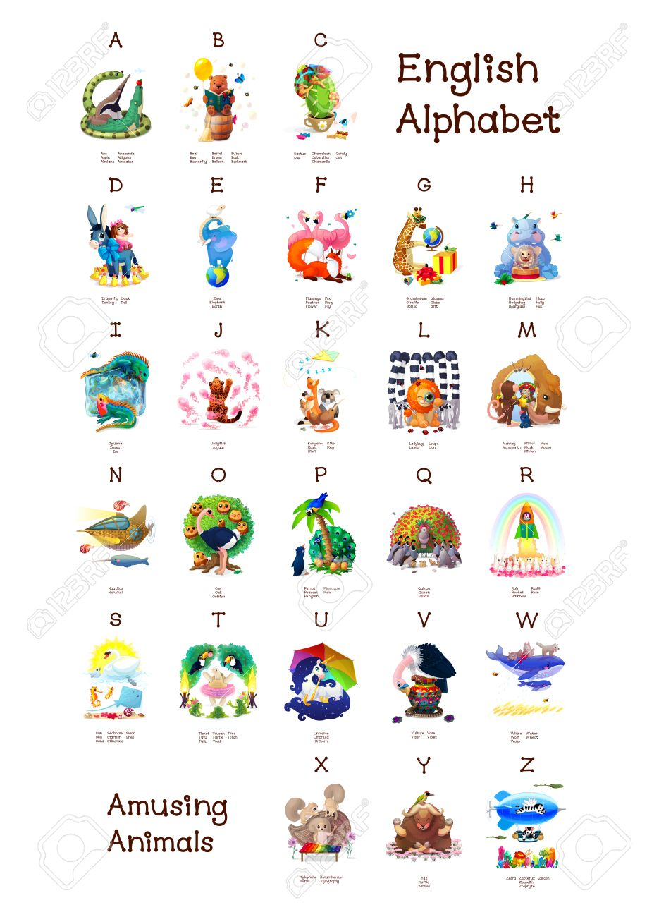 English Alphabet Serie D Animaux Amusantes Toutes Les 26 Lettres
