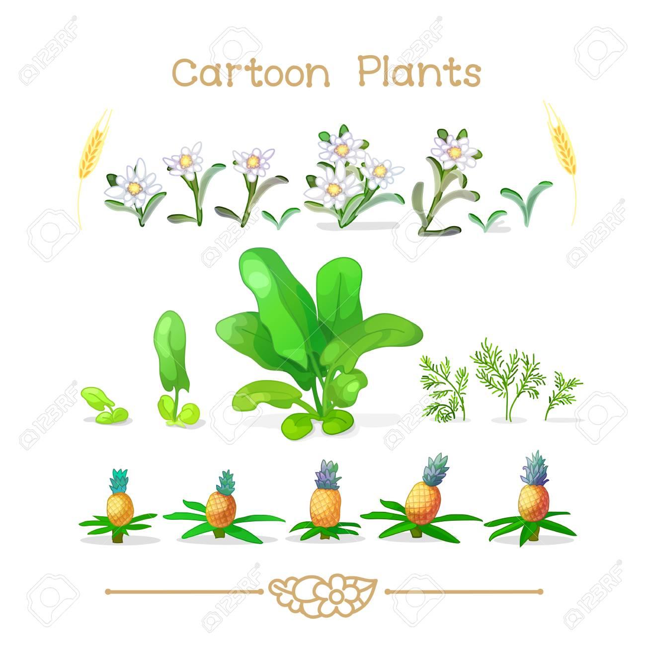 Resultado de imagen para imagines de botánica animadas