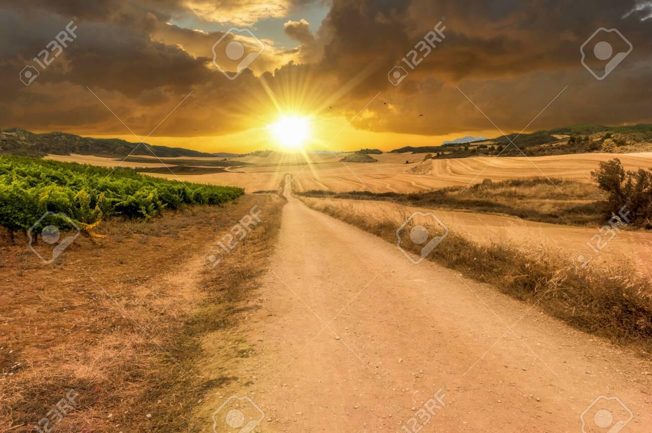 The sun at sunset on the road to Santiago de Navarra, Spain - 140097579