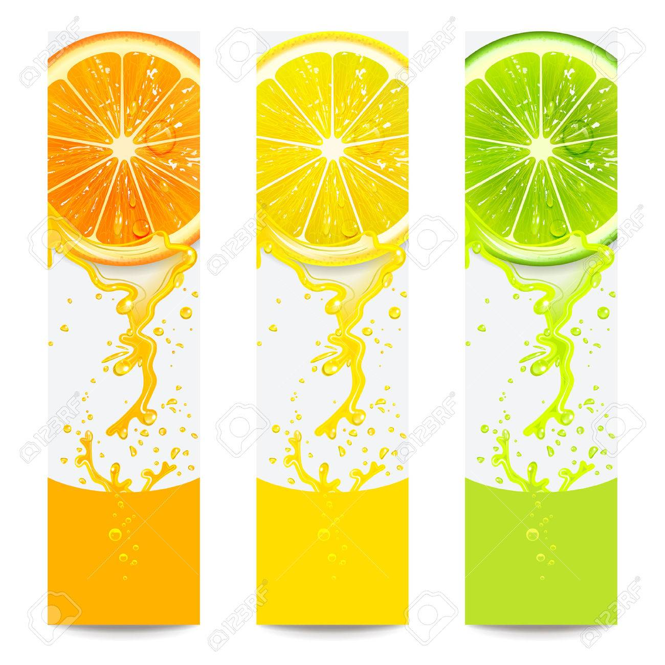 banners with fresh citrus fruit on a white background - 46145259