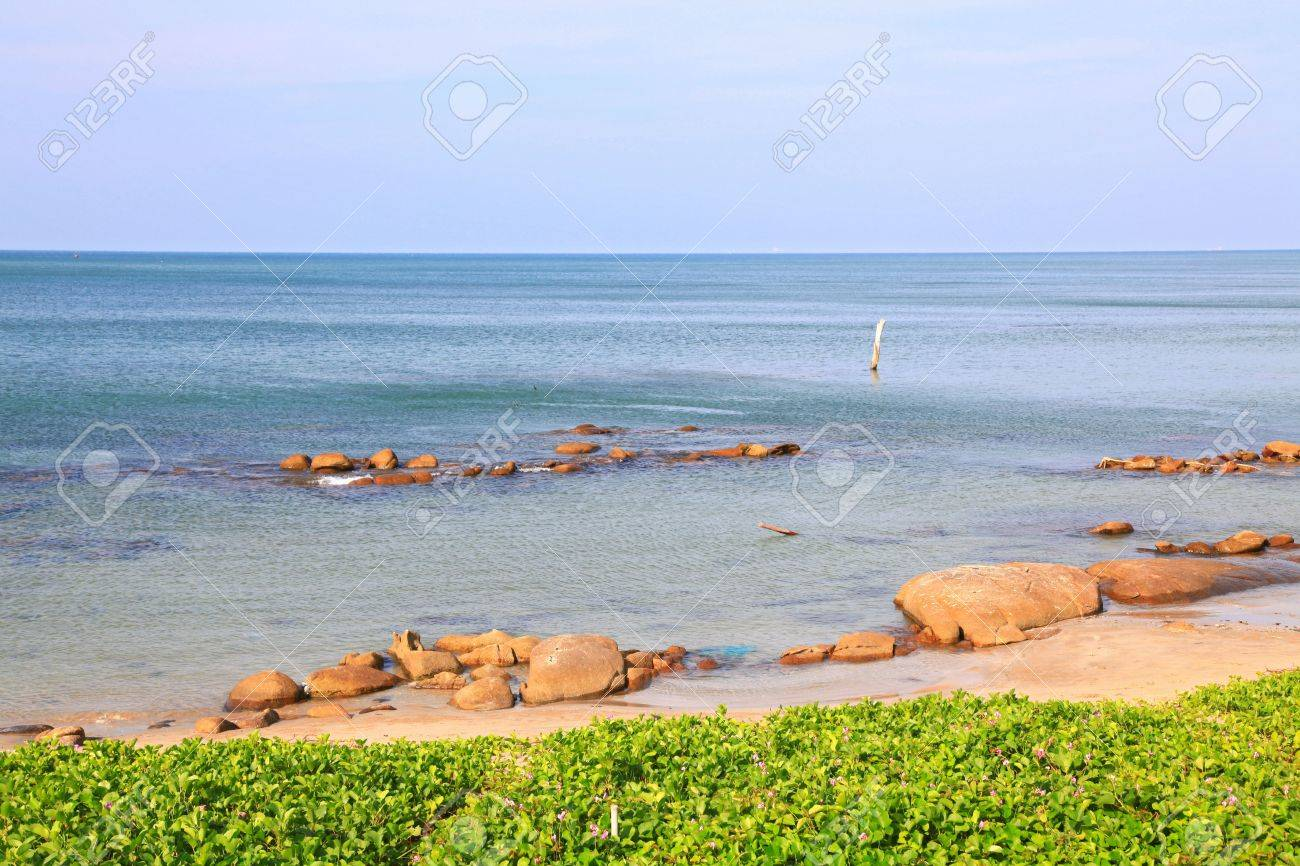 landscape of beach grass, Ipomoea pes-caprae Sweet, with rock and ripple in Rayong beach Thailand. Stock Photo - 8145277