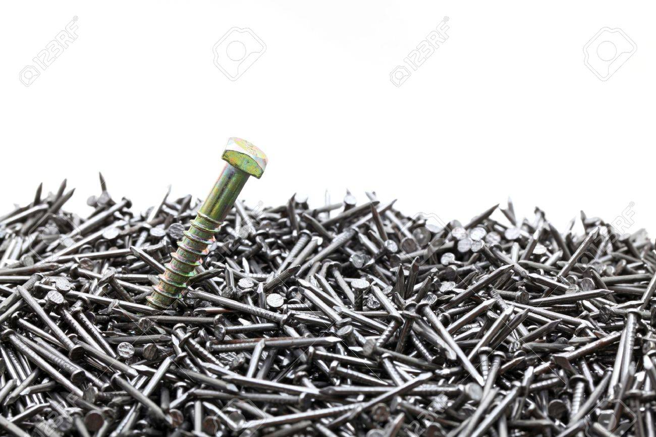 exclusive screw standing out from construction nails for leadership concept Stock Photo - 10201411