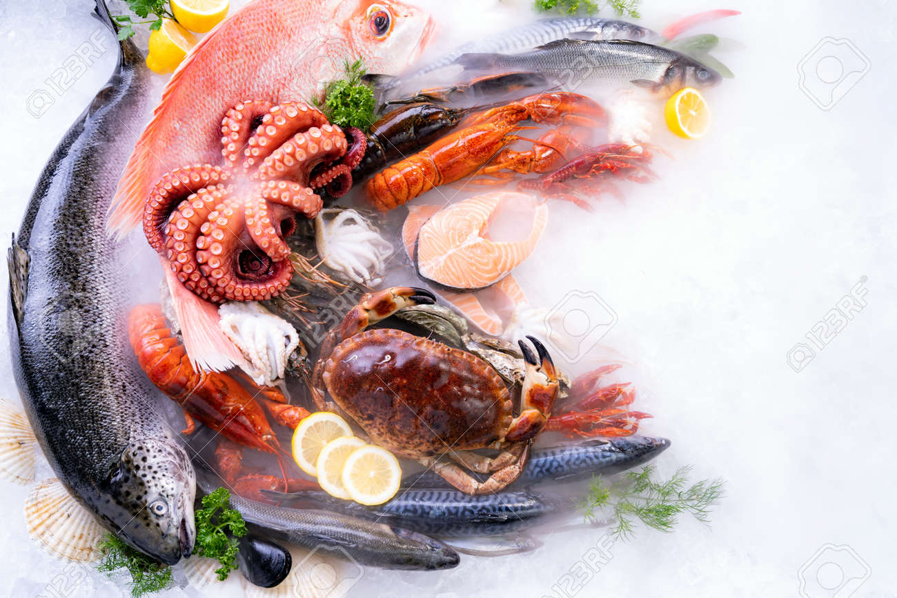 Top view of variety of fresh luxury seafood, Lobster salmon stone crab mackerel crayfish prawn octopus mussel and scallop, on ice background with icy smoke in seafood market. Photo With Copy space. - 158638040