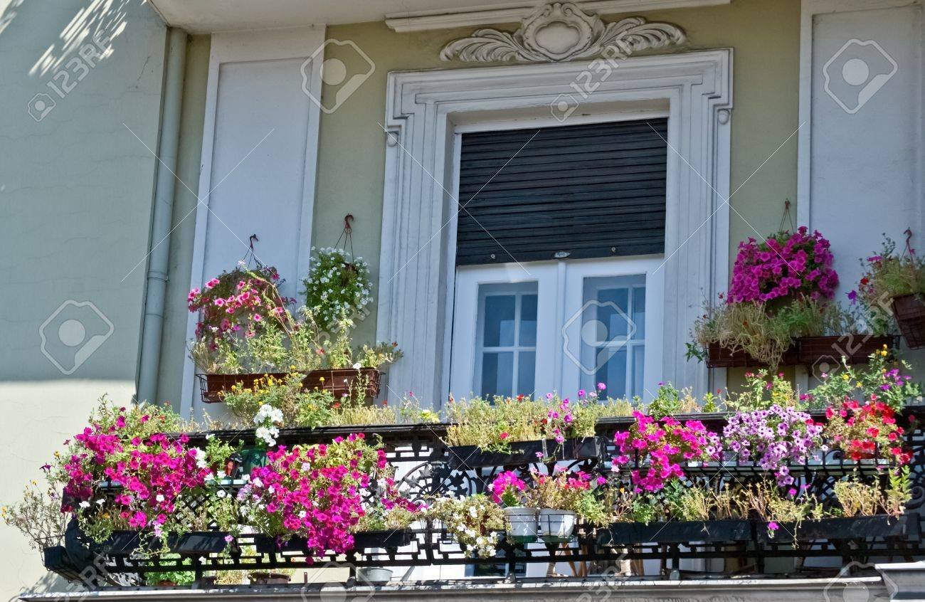 old balcony with flowers stock photo picture and royalty free image