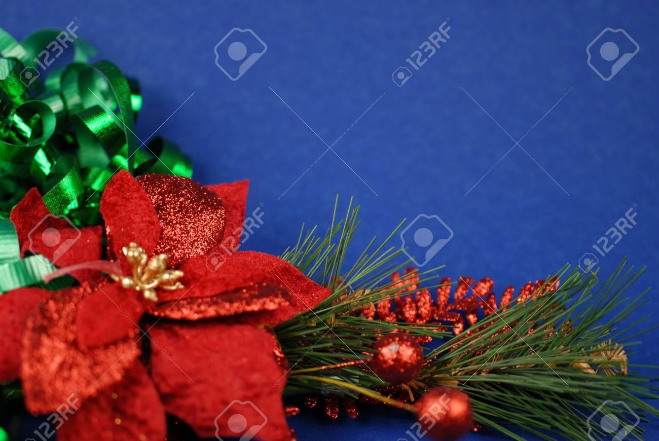 poinsettia on blue background Stock Photo - 5492865