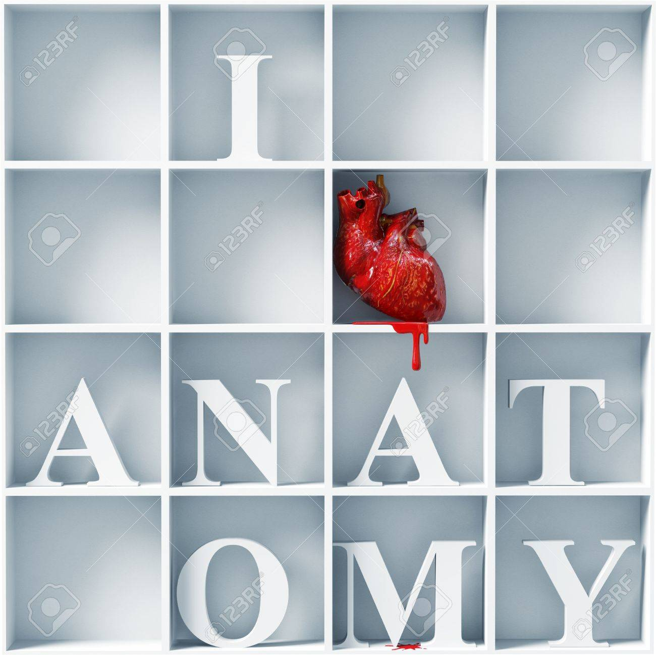 I Love Anatomy Bizarre Style Message 3d Concept Stock Photo