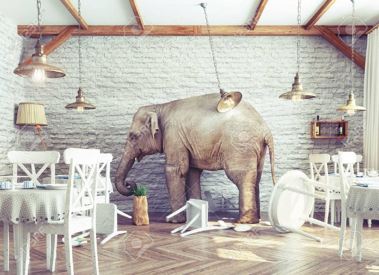 an elephant calm in a restaurant interior. photo combination concept Standard-Bild - 47971980