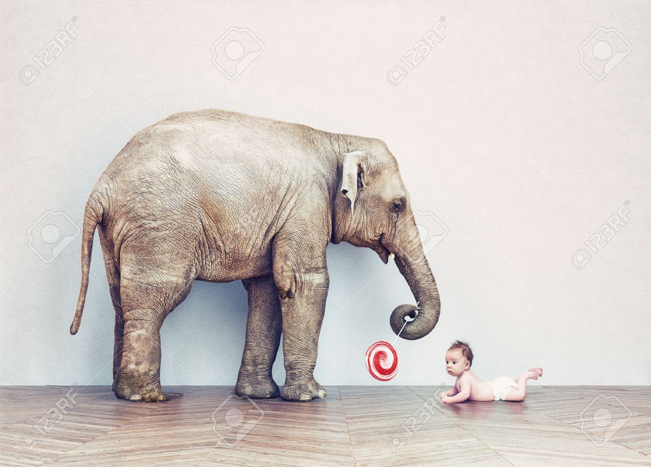 baby elephant and human baby in an empty room. Photo combination concept Standard-Bild - 47971996