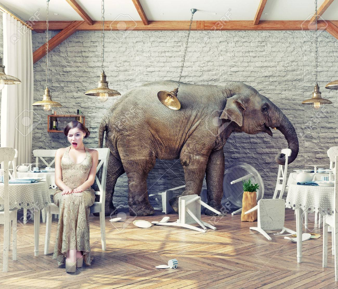 the elephant calm in a restaurant interior. photo combination concept Standard-Bild - 47972007
