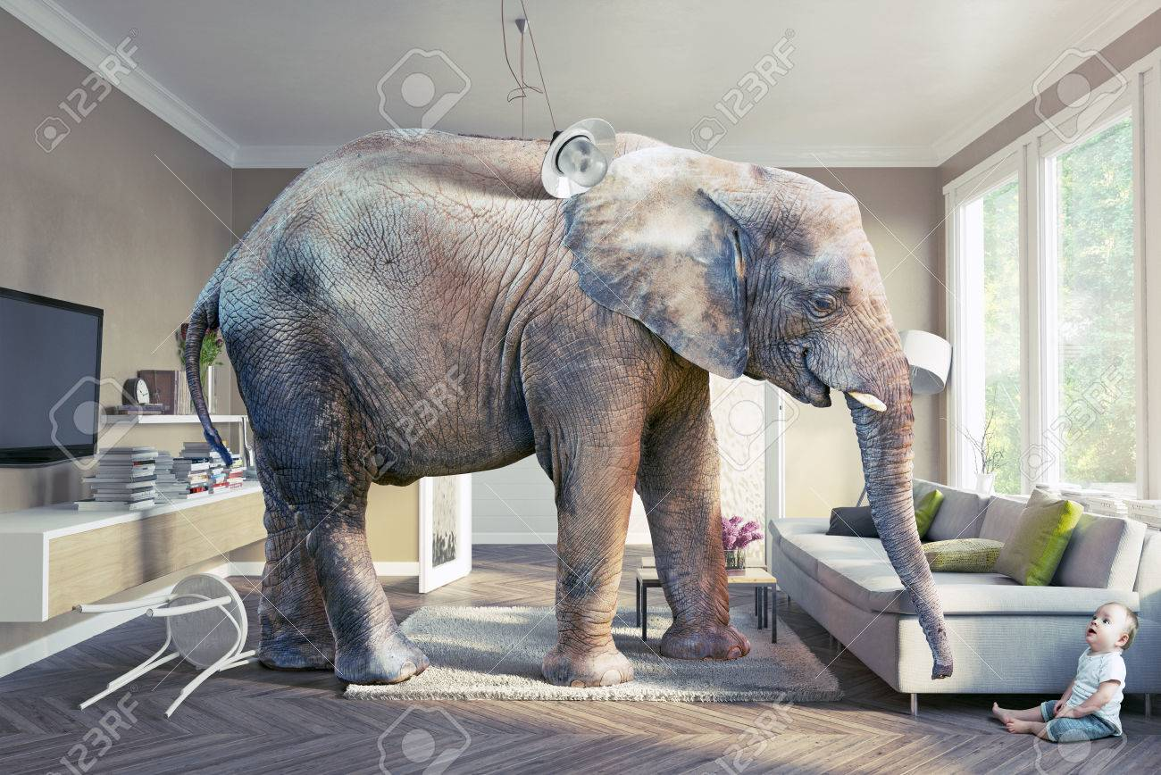 Big Elephant And The Baby In The Living Room 3d Concept Stock Photo