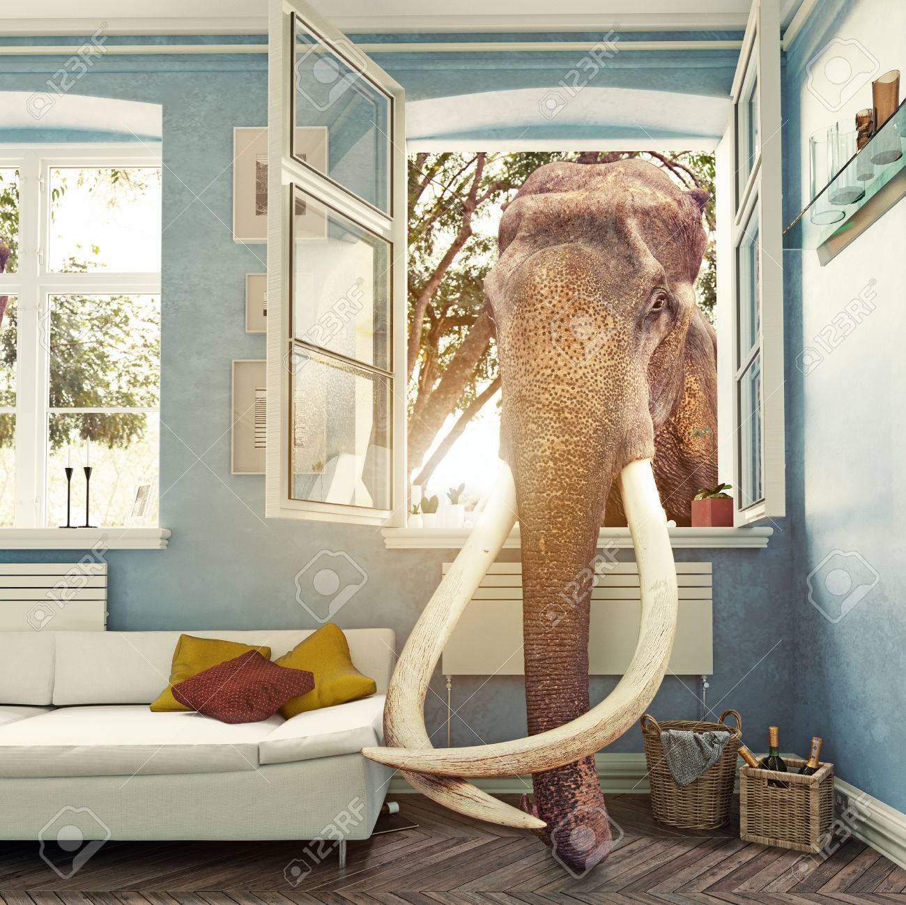 The elephant in the room window, Photo combination concept - 72435171