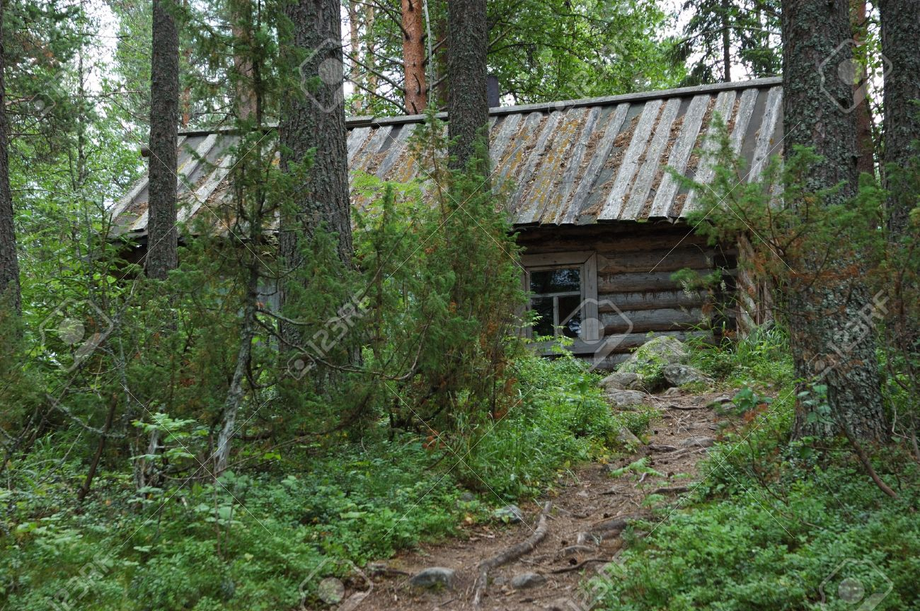 Single Small Wooden Hut With A Path Among The Trees Stock Photo   2784086