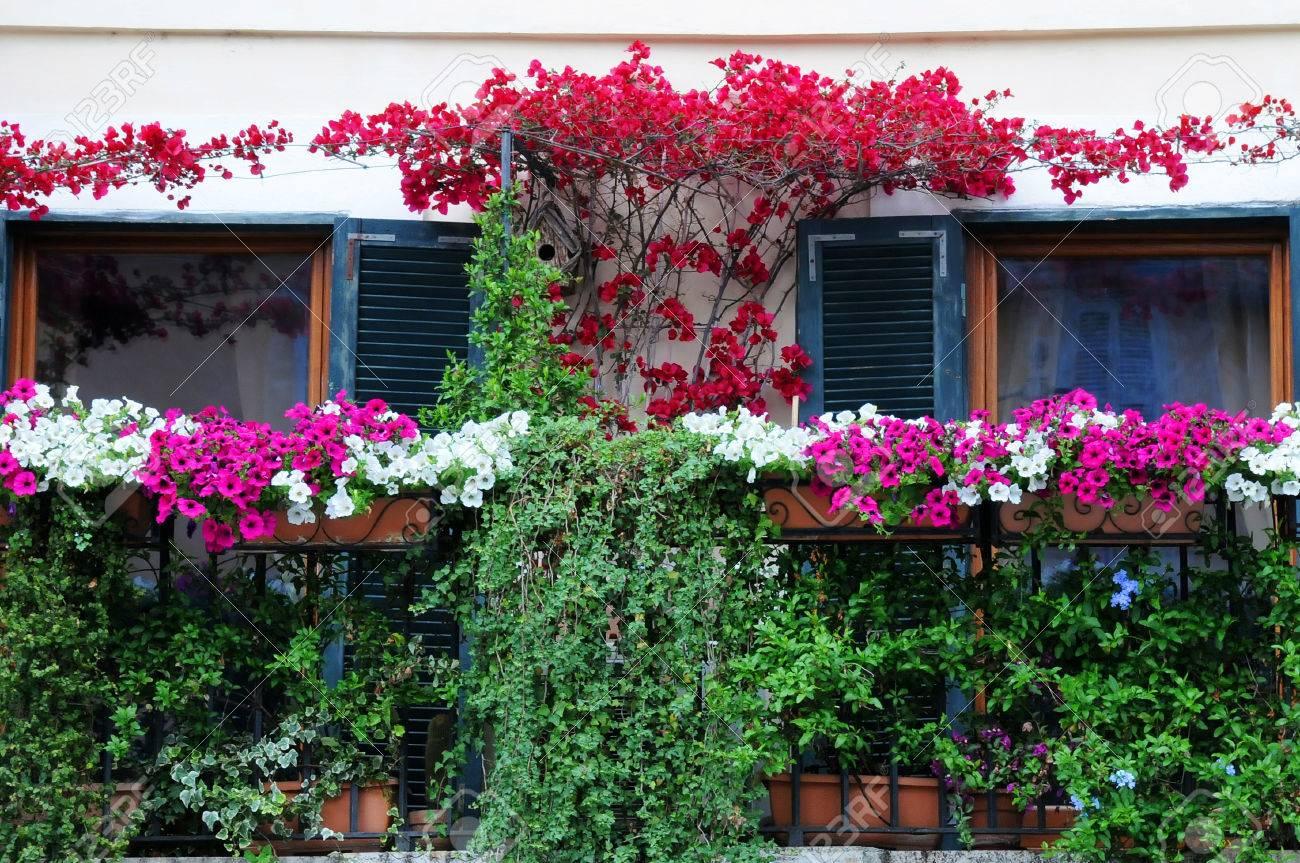 Blumen Und Pflanzen In Der Blüte Auf Dem Balkon In Italien Standard Bild    29684508
