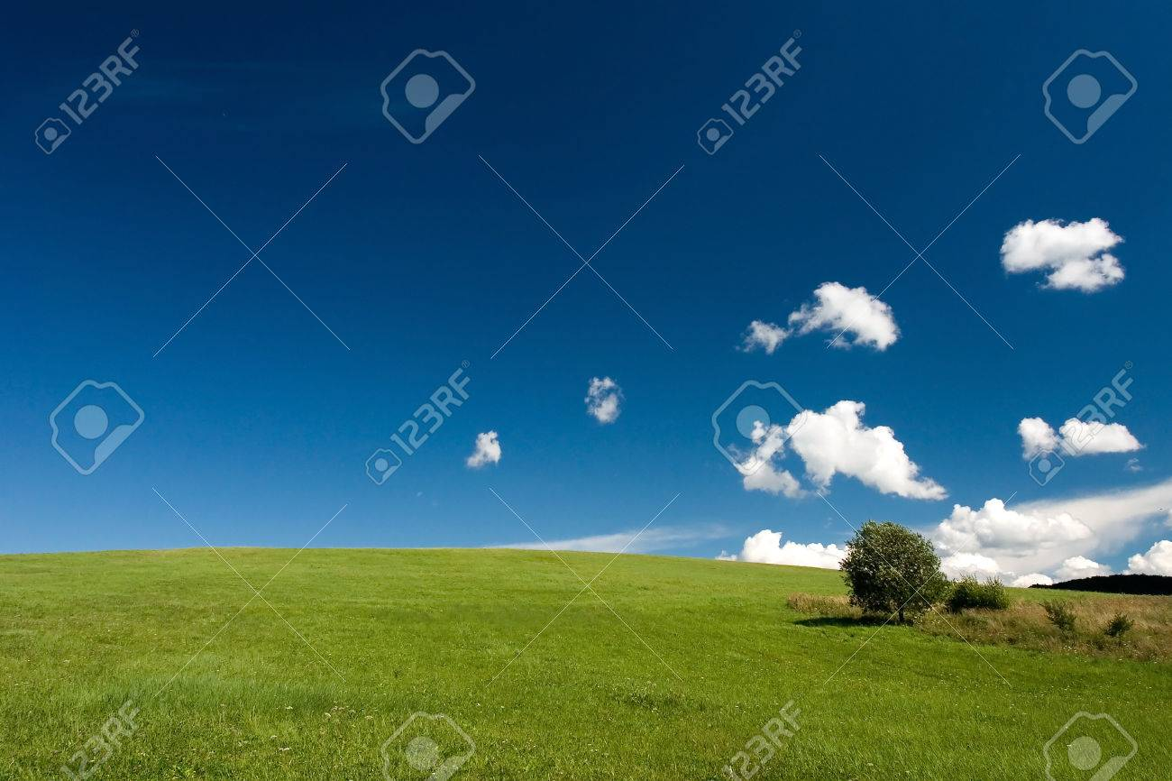 Summer abstract landscape with small white clouds and tree - 1414753