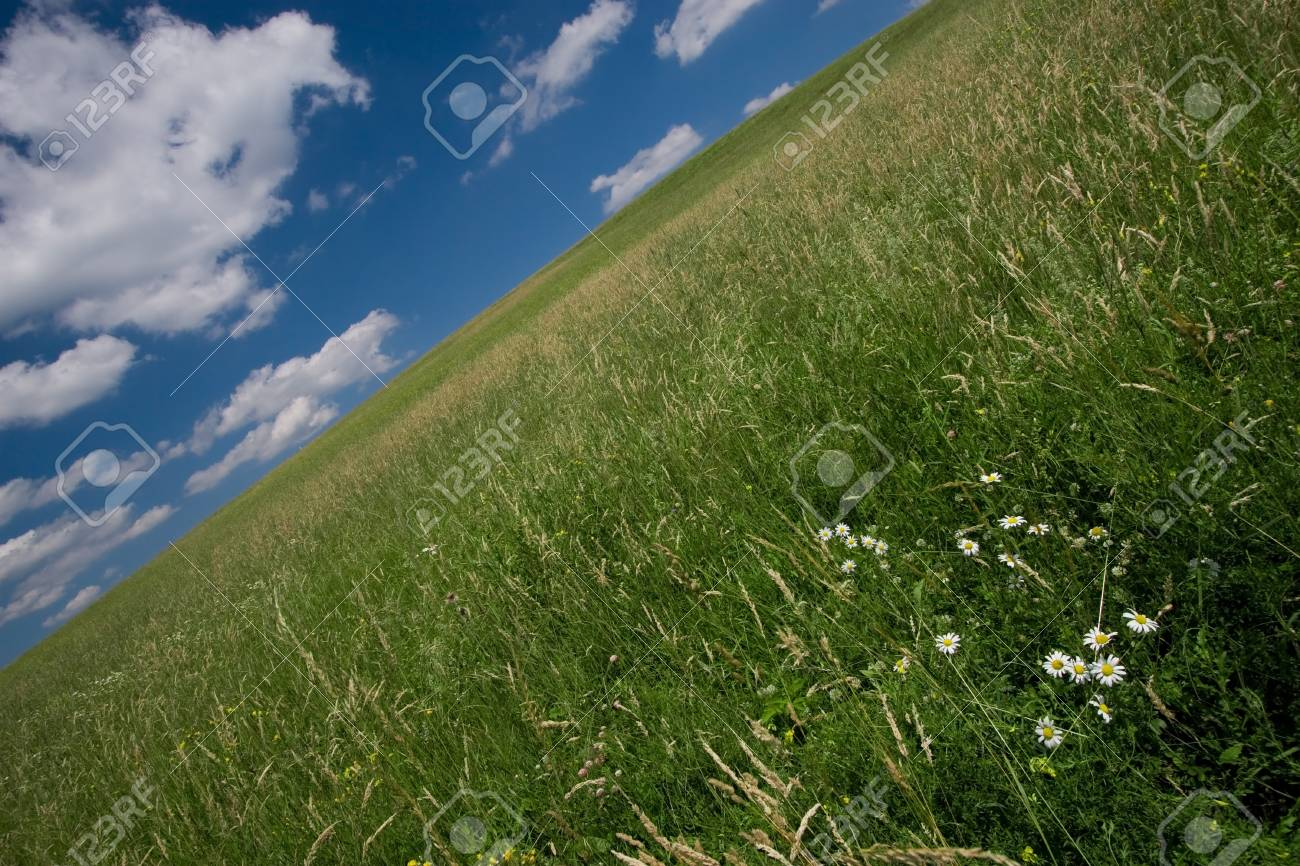 Abstract slanting green meadow against a blue sky Stock Photo - 1414835