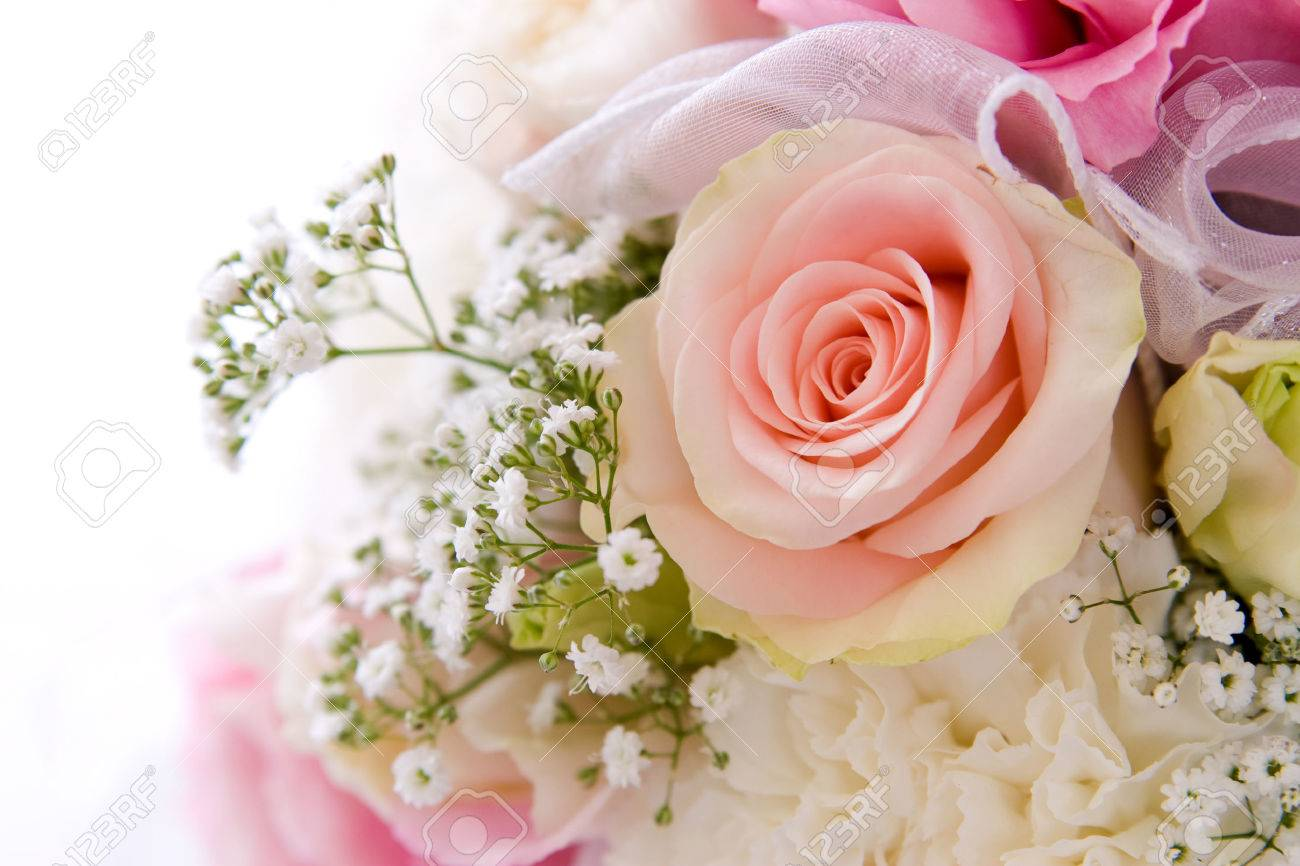 wedding background decoration with beautiful pink rose - 1414748