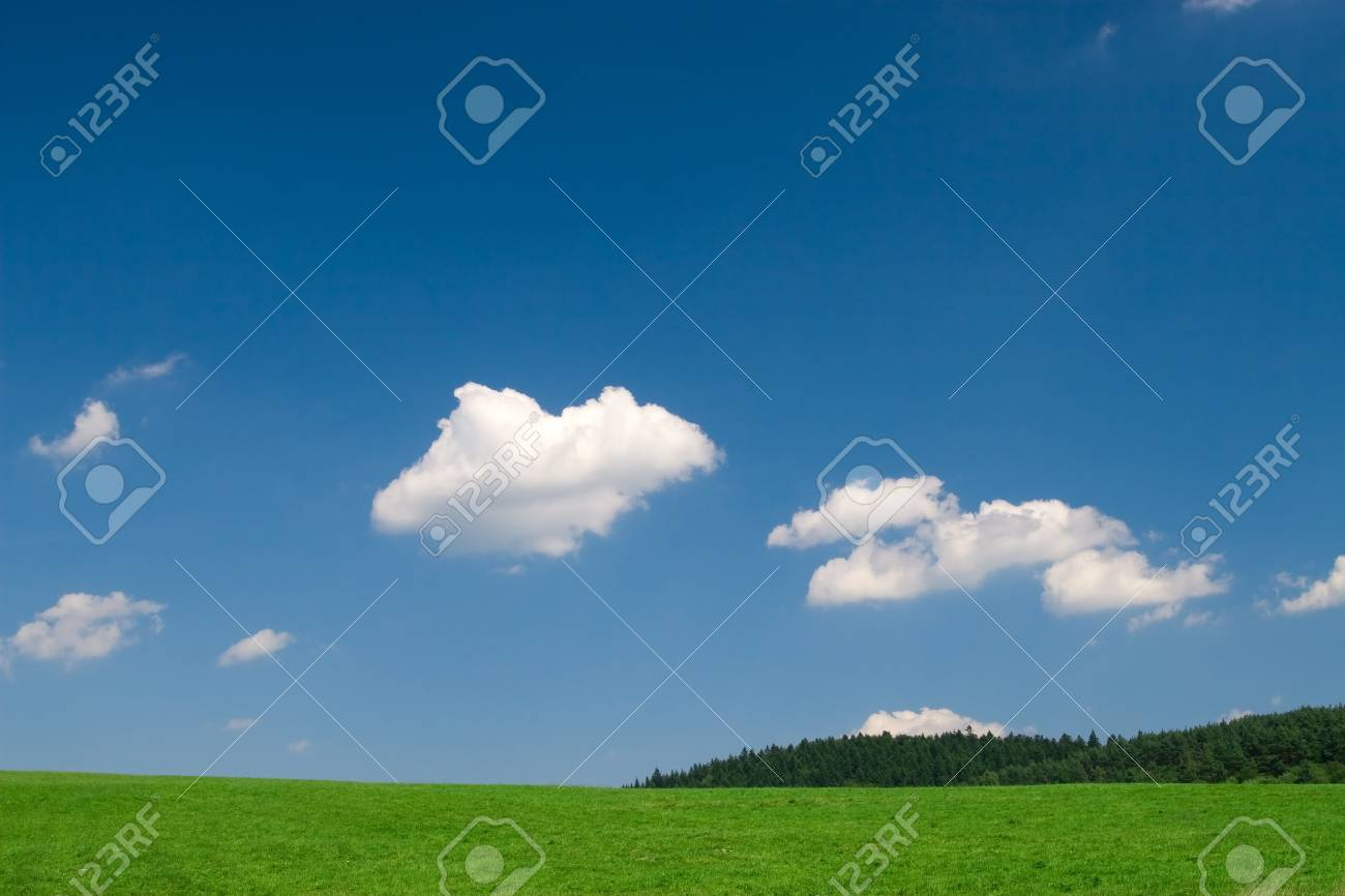 Green field and blue sky with cumulus clouds - 1463007