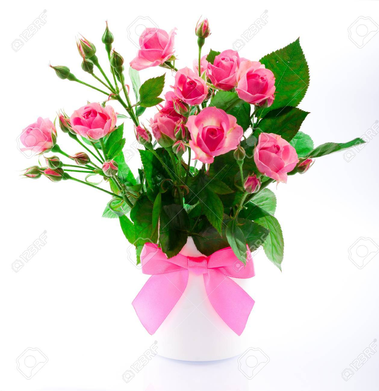 Flowers in a vase on a white background stock photo picture and flowers in a vase on a white background stock photo 17468111 reviewsmspy