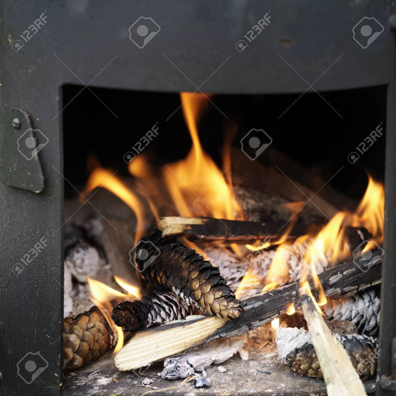 A metal stove with an open door and burning pine cones and firewood. Selective focus & A Metal Stove With An Open Door And Burning Pine Cones And Firewood ...