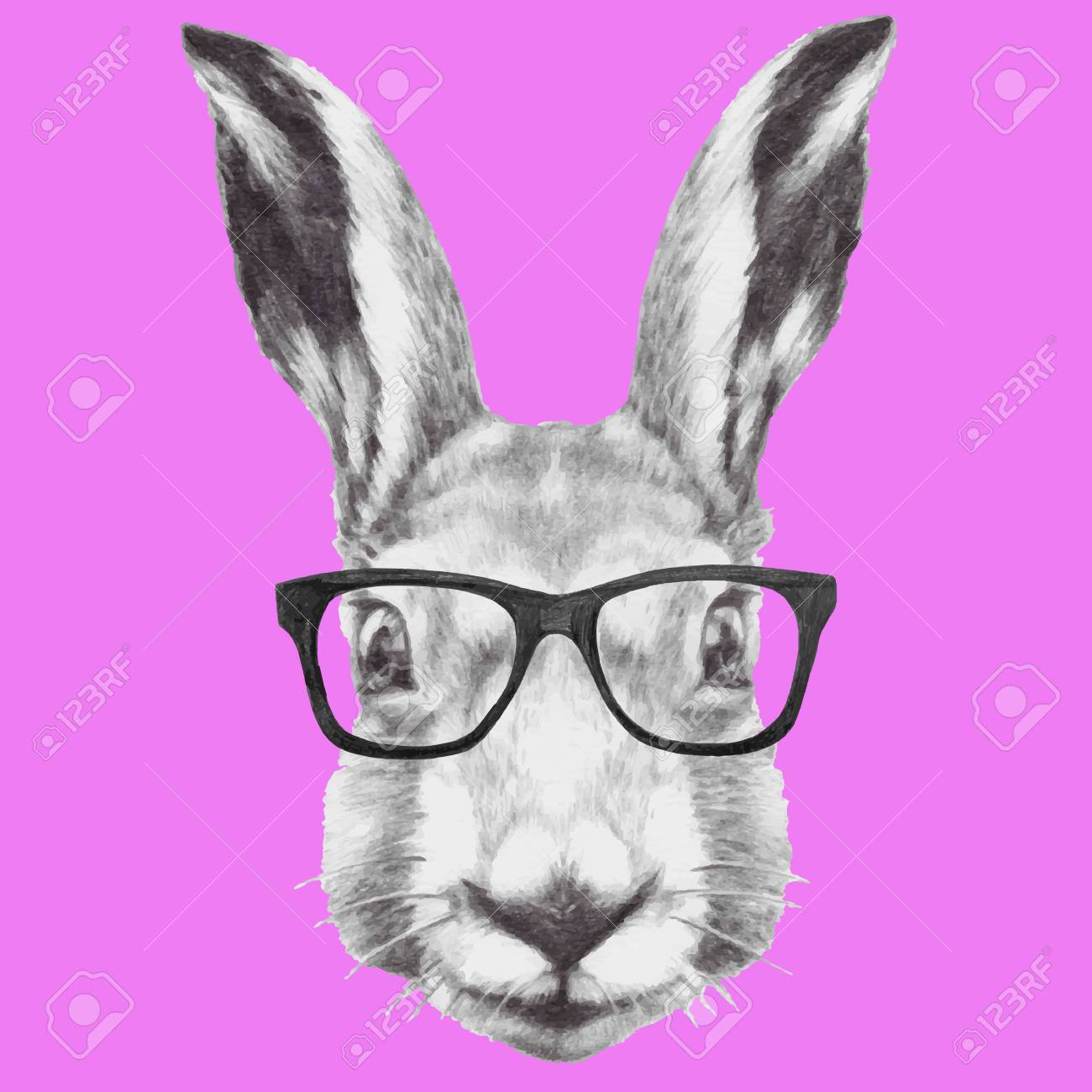 Hand drawn portrait of rabbit with glasses. Vector isolated elements. - 58461681