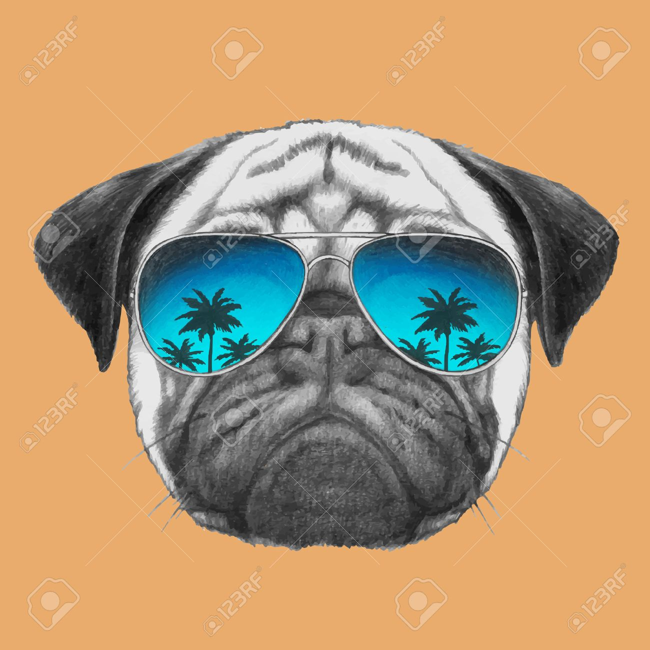 Portrait of Pug Dog with mirror sunglasses. Vector - 60910463