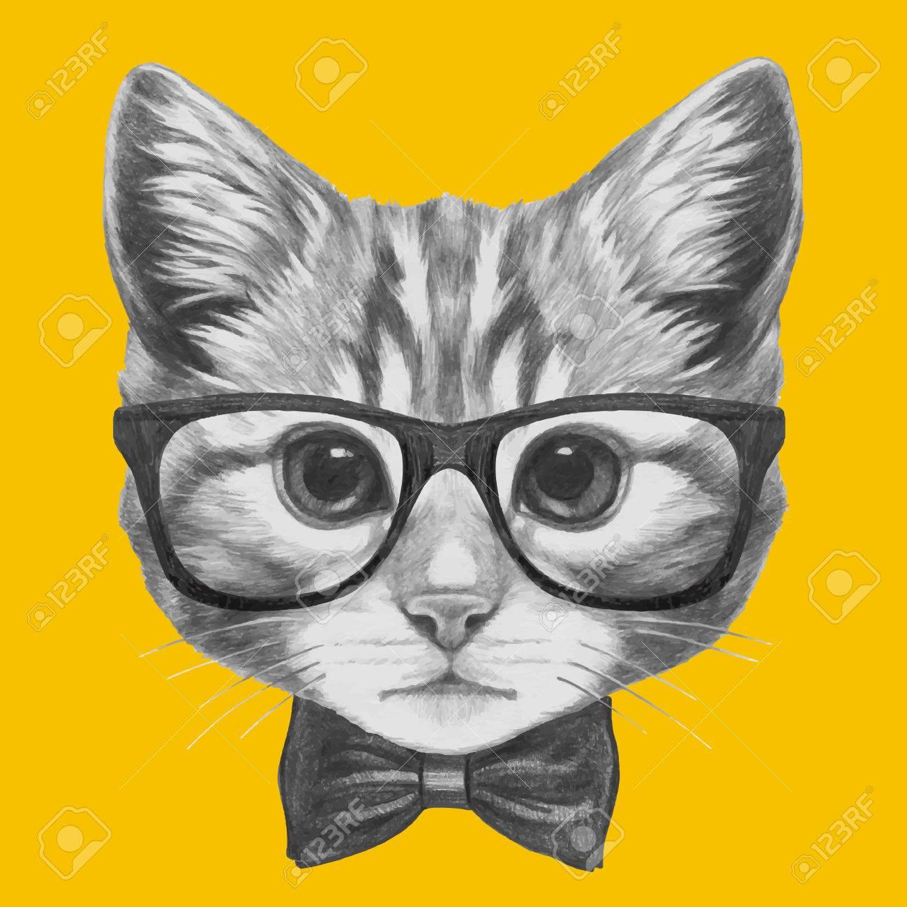 dessiné  la main portrait de chat avec des lunettes et un noeud papillon Vector