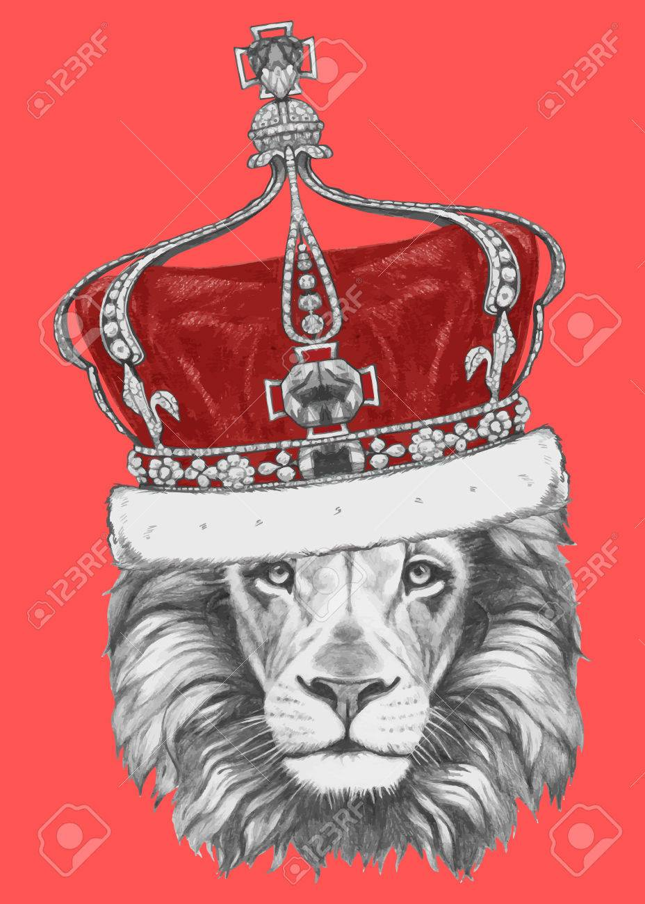 1709ef9ef41 Hand drawn portrait of Lion with crown. Vector isolated elements. Stock  Vector - 61667045