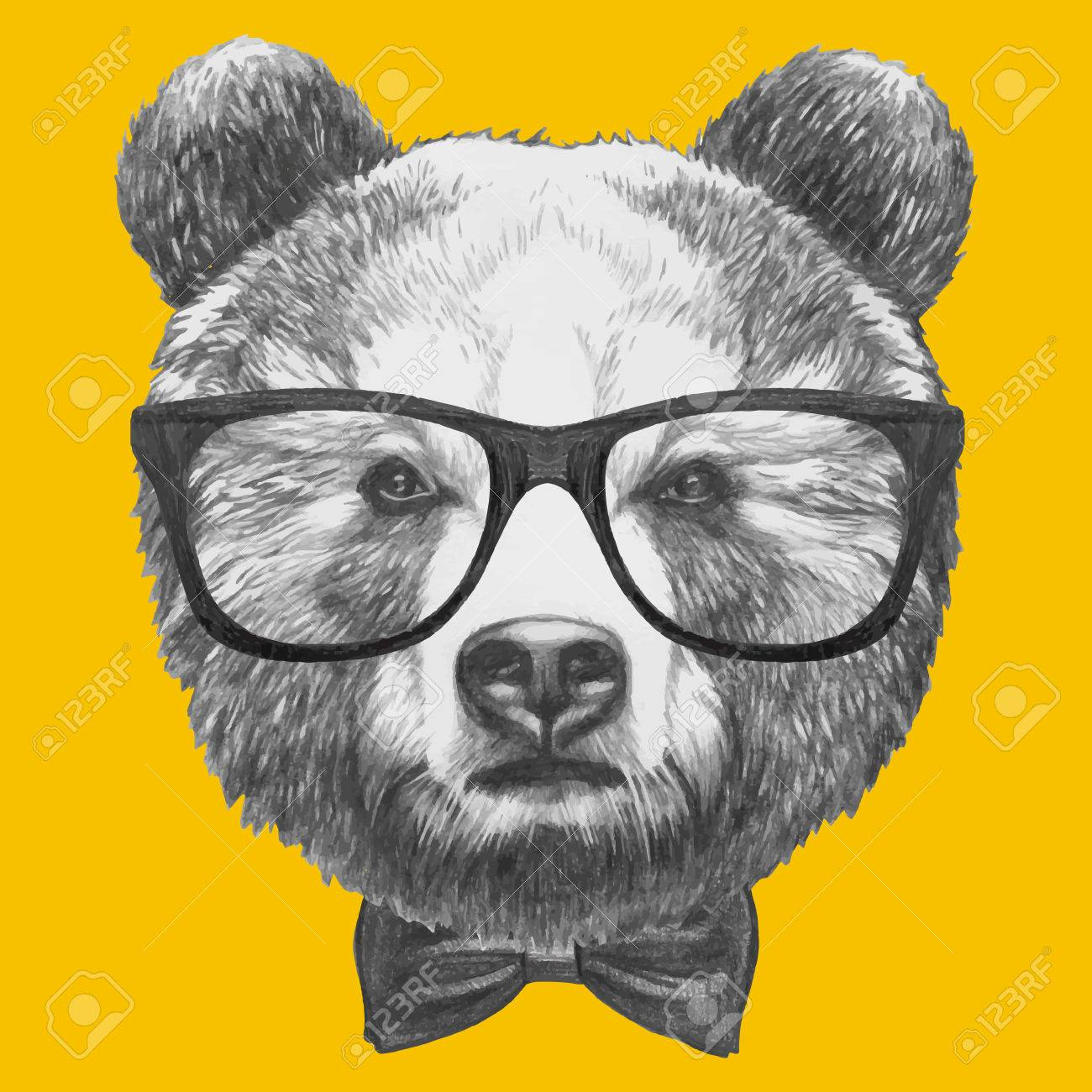 5888013cd58 Hand drawn portrait of Bear with glasses and bow tie. Vector isolated  elements. Stock