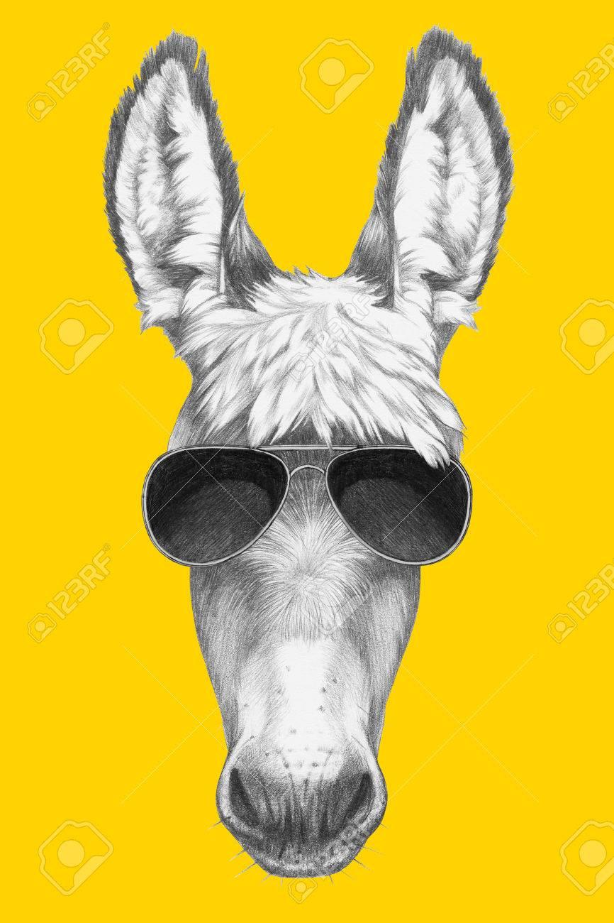 a313bc5dec Illustration portrait of donkey with sunglasses hand drawn illustration jpg  866x1300 Donkey with sun glasses