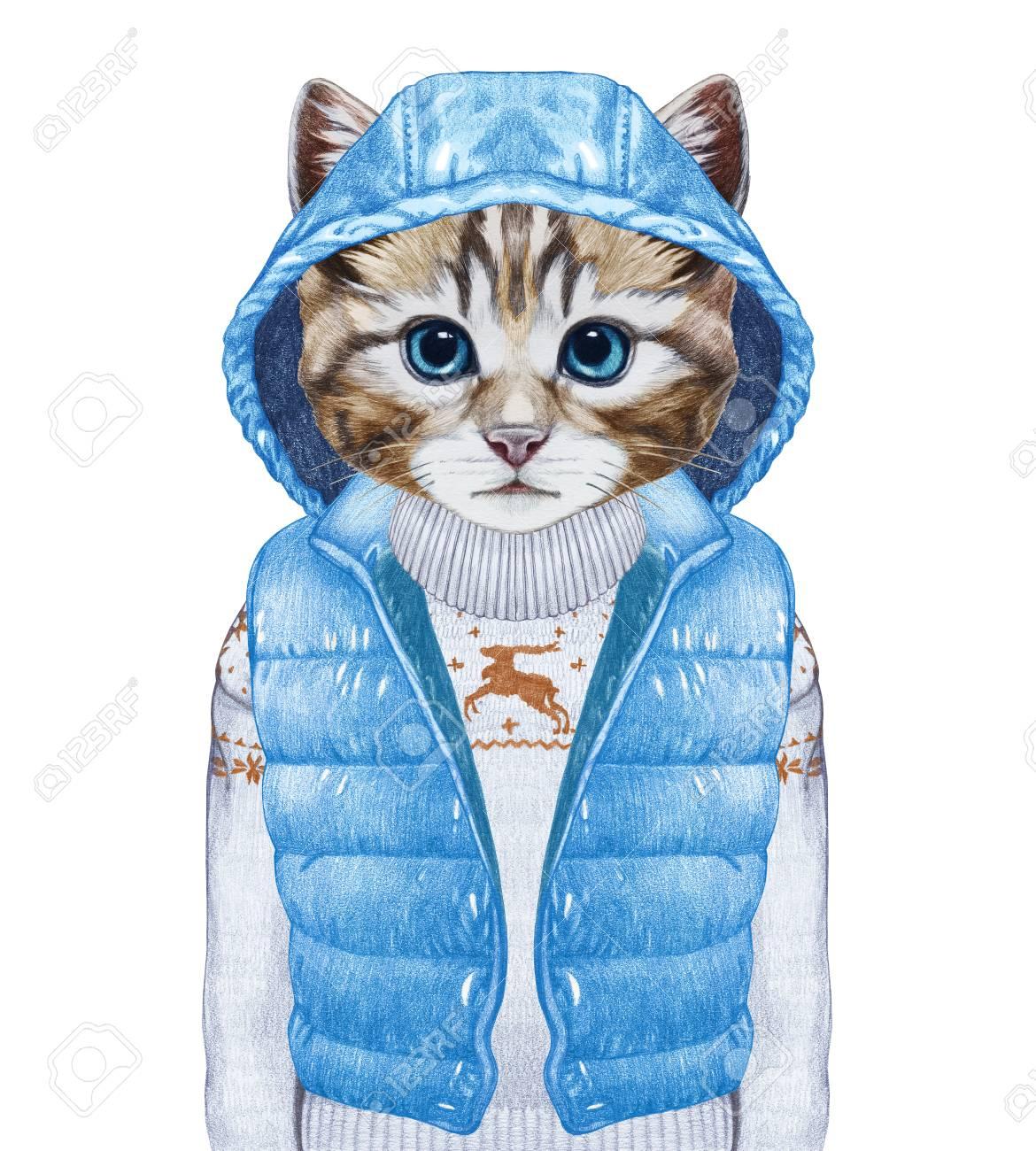 data di rilascio: e14cf c24c0 Gli animali come umani. Gatto in giù maglia e maglione. Illustrazione a  mano, colorata in digitale.