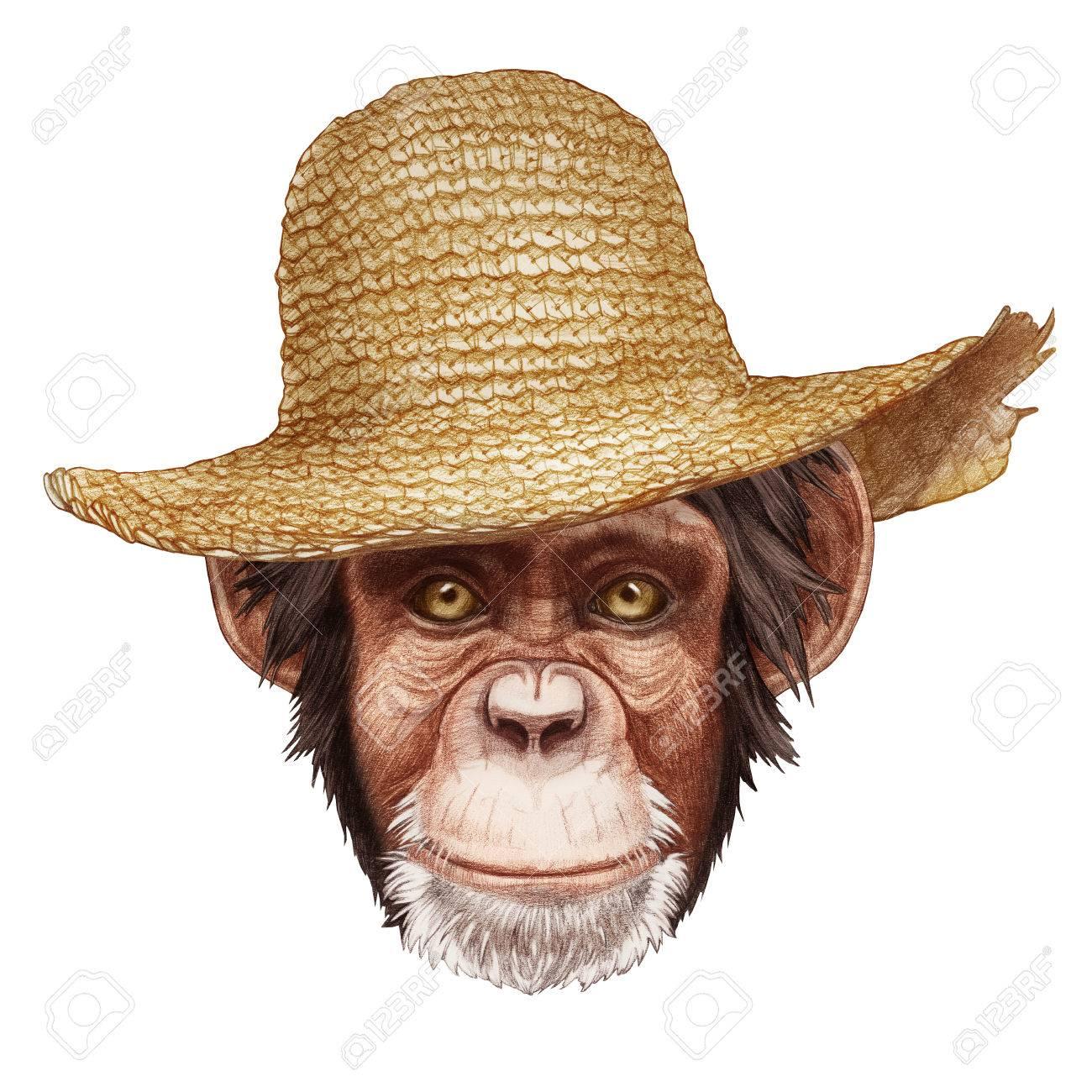 麦わら帽子と猿の肖像画手描きイラストデジタル色します の写真